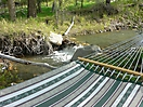 Bullion Creekside Hammock is calling